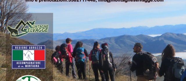 Escursioni guidate dal 1 al 4 novembre 2018