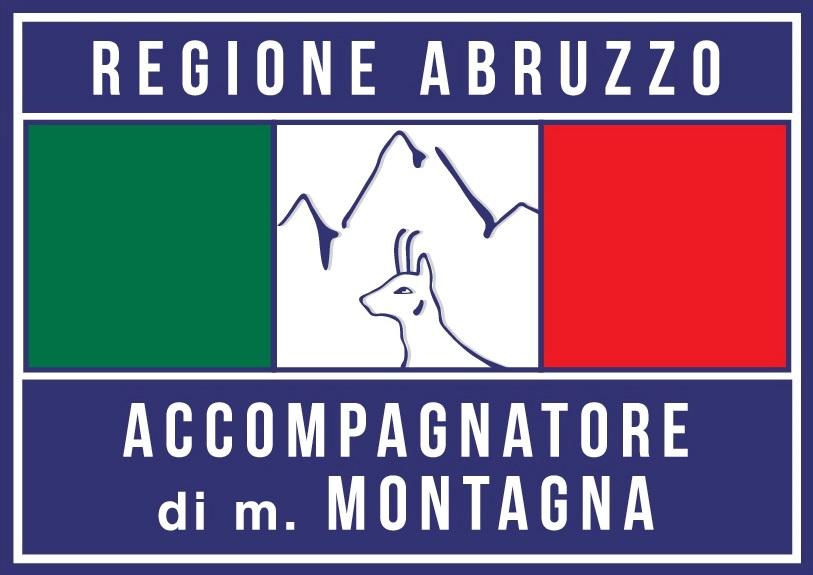 logo ACCOMPAGNATORE