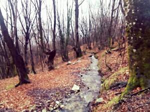 Segui il corso del fiume...