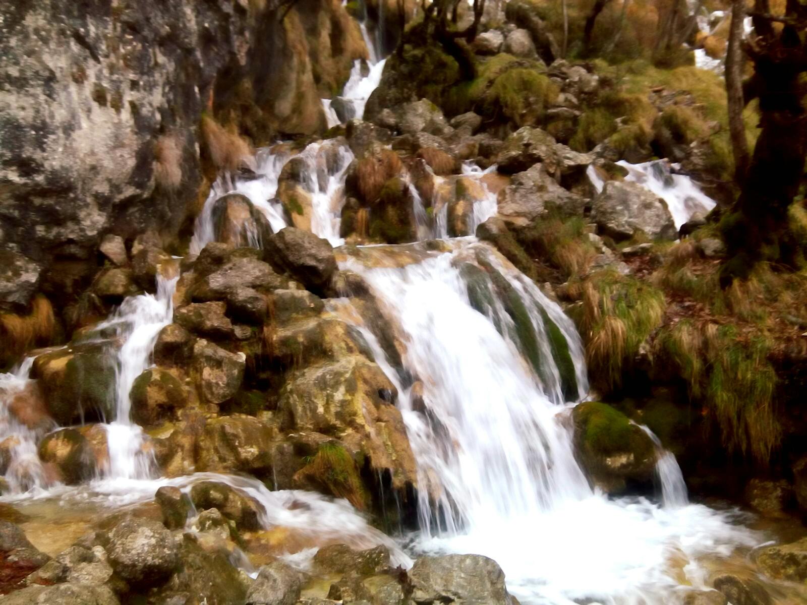 Verso la cascata, seguendo una carpa che diventerà drago