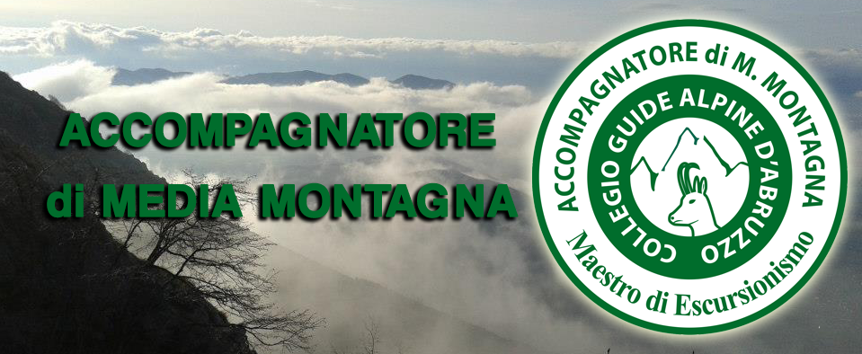 Chi è l'Accompagnatore di Media Montagna