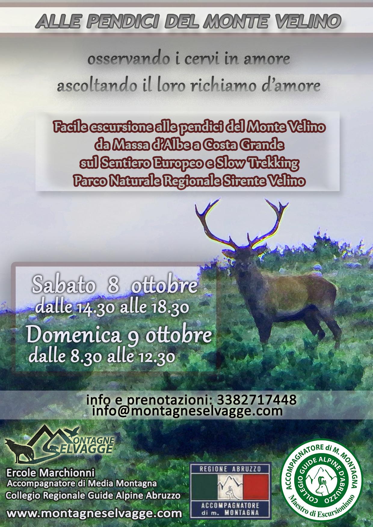 Monte Velino - Cervi in amore