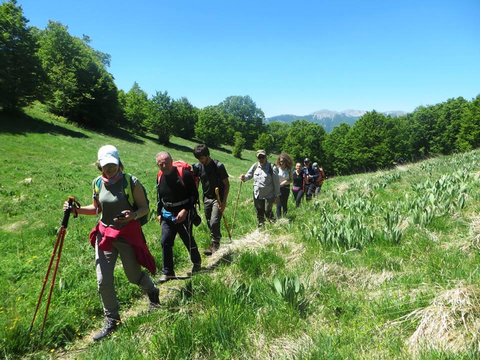 Fotagrafie dell'escursione guidata nella foresta vetusta della Val Cervara