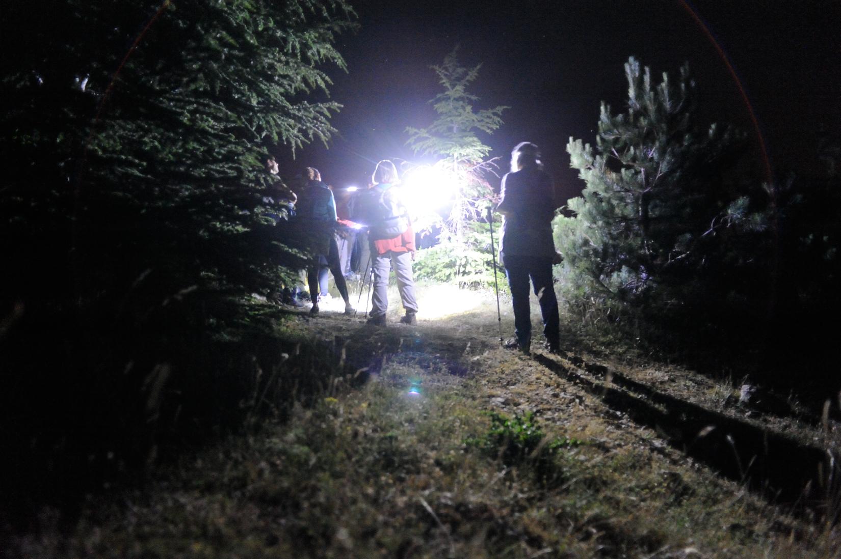 Escursione astronomica notturna sul Salviano