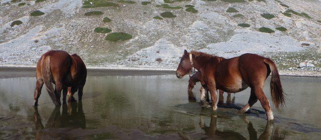Escursione guidata al Lago della Duchessa – Resoconto fotografico