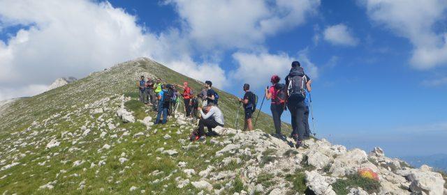 Alla scoperta del Monte Camicia, tra Camosci e Stelle Alpine