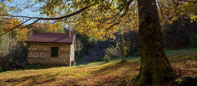 """Due giorni """"Into the wild"""" nel Parco Nazionale d'Abruzzo, Lazio e Molise"""