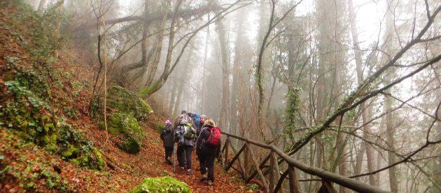 Montagnaterapia, il sentiero che cura: i consigli dello psicologo