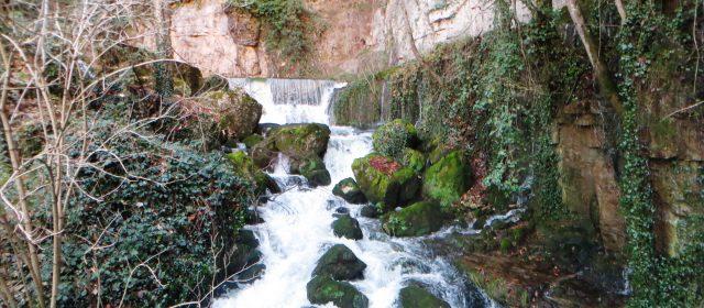 Le risorgenti del fiume Imele: il fiume freddo delle profondità [VIDEO]