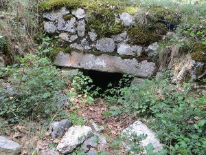 Necropoli del Cantone - tomba 14