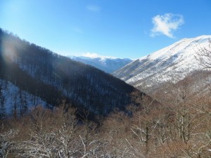Panoramica dalla Faggeta di Val Cervara