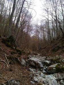l'entrata della Val Cervara